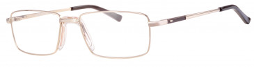 Ferucci FE2021 glasses in Gold