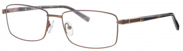 Ferucci FE2028 glasses in Bronze