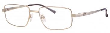 Ferucci Titanium FE706 glasses in Gold