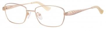 Ferucci Titanium FE709 glasses in Gold