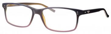 Schott NYC SCH4021 glasses in Blue/Brown