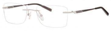 Ferucci Titanium FE713 glasses in Silver