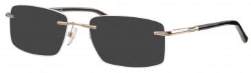 Ferucci FE2014 sunglasses in Gold