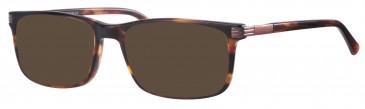 Ferucci FE190 sunglasses in Havana