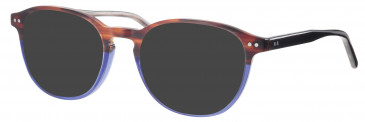 Synergy SYN6020 sunglasses in Brown/Blue