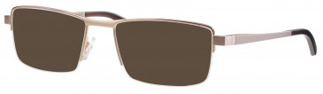Ferucci FE2010 sunglasses in Gold