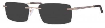 Ferucci FE2013 sunglasses in Gold