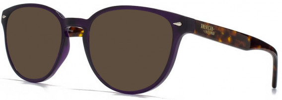 American Freshman AMFO009 Glasses in Crystal Purple