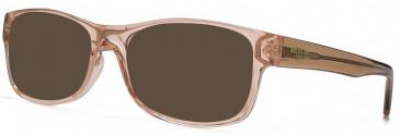 American Freshman AMFO001 sunglasses in Pink