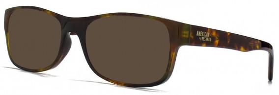 American Freshman AMFO001 sunglasses in Tortoiseshell