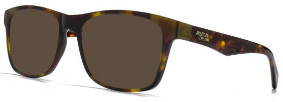American Freshman AMFO002 sunglasses in Tortoiseshell