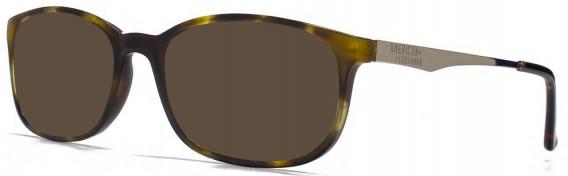 American Freshman AMFO007 sunglasses in Tortoiseshell
