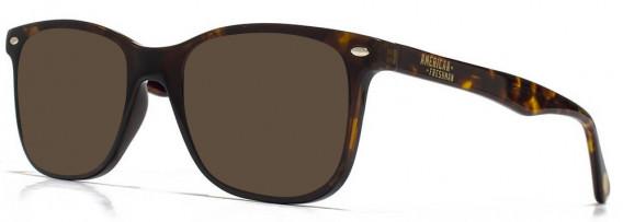 American Freshman AMFO006 sunglasses in Tortoiseshell