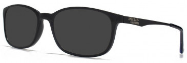 American Freshman AMFO007 sunglasses in Black