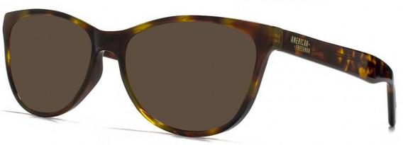 American Freshman AMFO010 sunglasses in Tortoiseshell