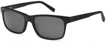 SFE-10234 sunglasses in Black