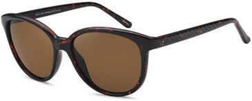 SFE-10253 sunglasses in Havana