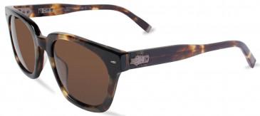 John Varvatos JV V796 sunglasses in Brown UF