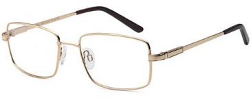 SFE-10433 glasses in Gold