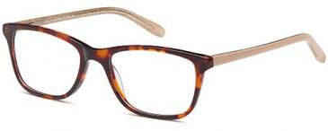 SFE-10401 glasses in Havana