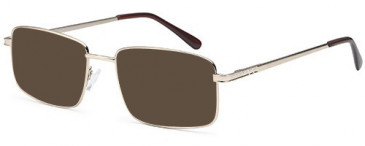 SFE-10449 sunglasses in Gold