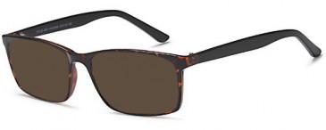 SFE-10472 sunglasses in Havana