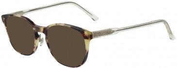 Prodesign Denmark PD4752 sunglasses in Brown Medium Matt