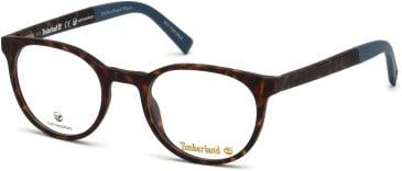 Timberland TB1584 glasses in Dark Havana