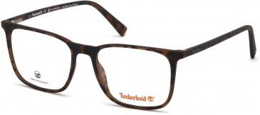 Timberland TB1608-56 glasses in Dark Havana