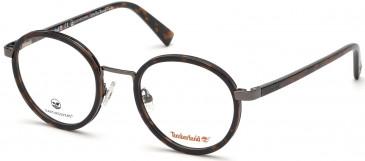 Timberland TB1609 glasses in Dark Havana