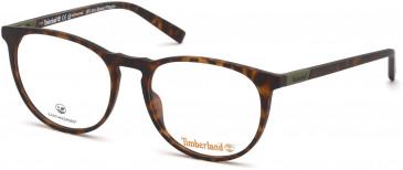 Timberland TB1611 glasses in Dark Havana