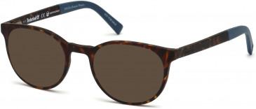 Timberland TB1584 sunglasses in Dark Havana