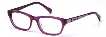 Bench 248 glasses in Purple (BCH248-C2)
