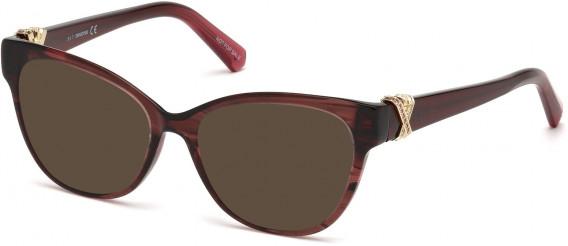 Swarovski SK5250-H sunglasses in Shiny Bordeaux