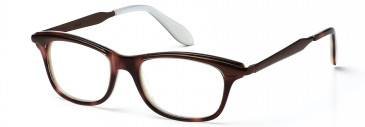 Bench 271 glasses in Brown (BCH271-C1)