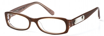Bench 272 glasses in Brown (BCH272-C1)