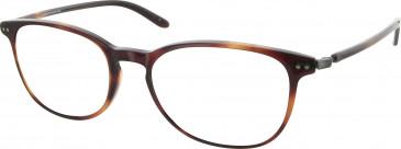 Levis LS108 glasses in Tortoiseshell