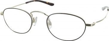 Levis LS110 glasses in Black/Gold