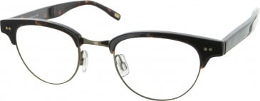 Levis LS111 glasses in Tortoiseshell