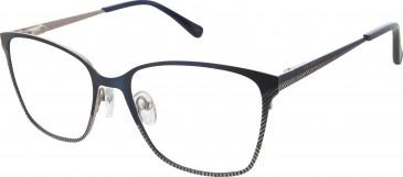 Ted Baker TB2235 glasses in Navy