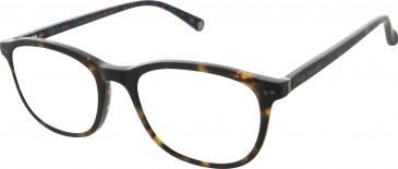 Ted Baker TB8177 glasses in Tortoise