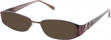 Diane von Furstenberg DVF8005 sunglasses in Burgundy
