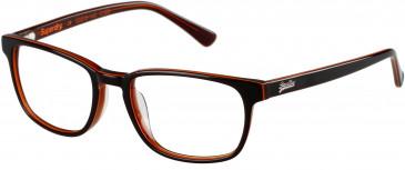 Superdry SDO-QUINN glasses in Gloss Brown Horn/Orange Stripe