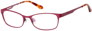 Superdry SDO-AIMI glasses in Matte Painted Burgundy/Gloss Blond Tortoise