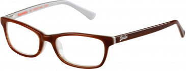 Superdry SDO-ASHLEIGH glasses in Gloss Horn/Brown