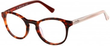 Superdry SDO-CHIE glasses in Gloss Tortoise/Bone/Horn