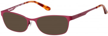 Superdry SDO-AIMI sunglasses in Matte Painted Burgundy/Gloss Blond Tortoise