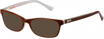 Superdry SDO-ASHLEIGH sunglasses in Gloss Horn/Brown