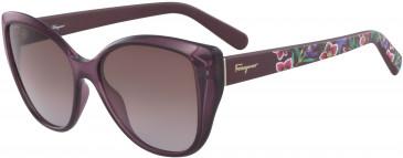 Salvatore Ferragamo SF912S sunglasses in Wine