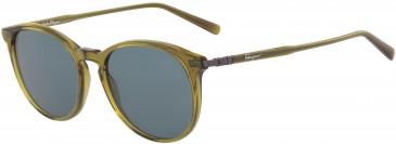Salvatore Ferragamo SF911S sunglasses in Khaki
